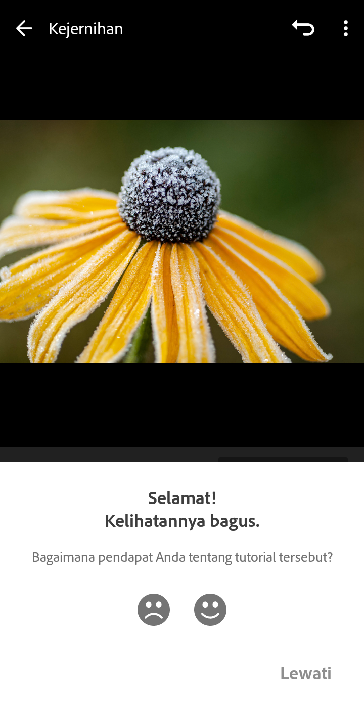 Tutorial Lightroom Selebgram